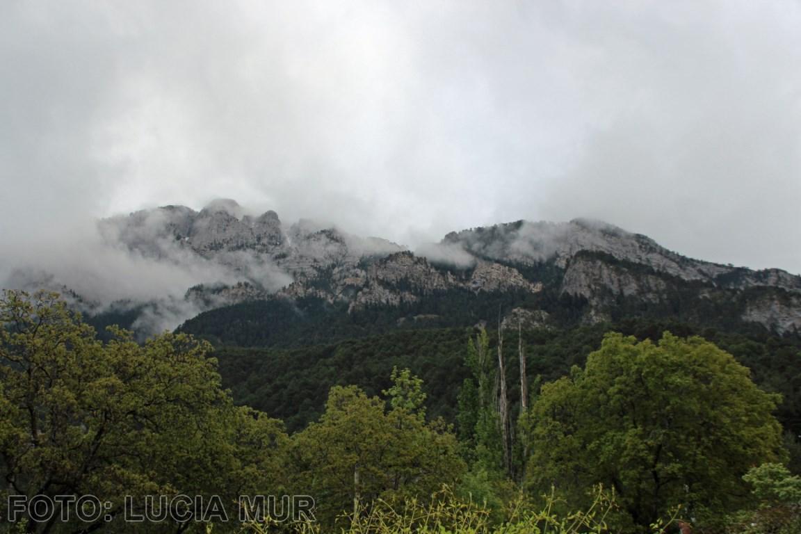 Muy nublado en La Freda. [1280x768]