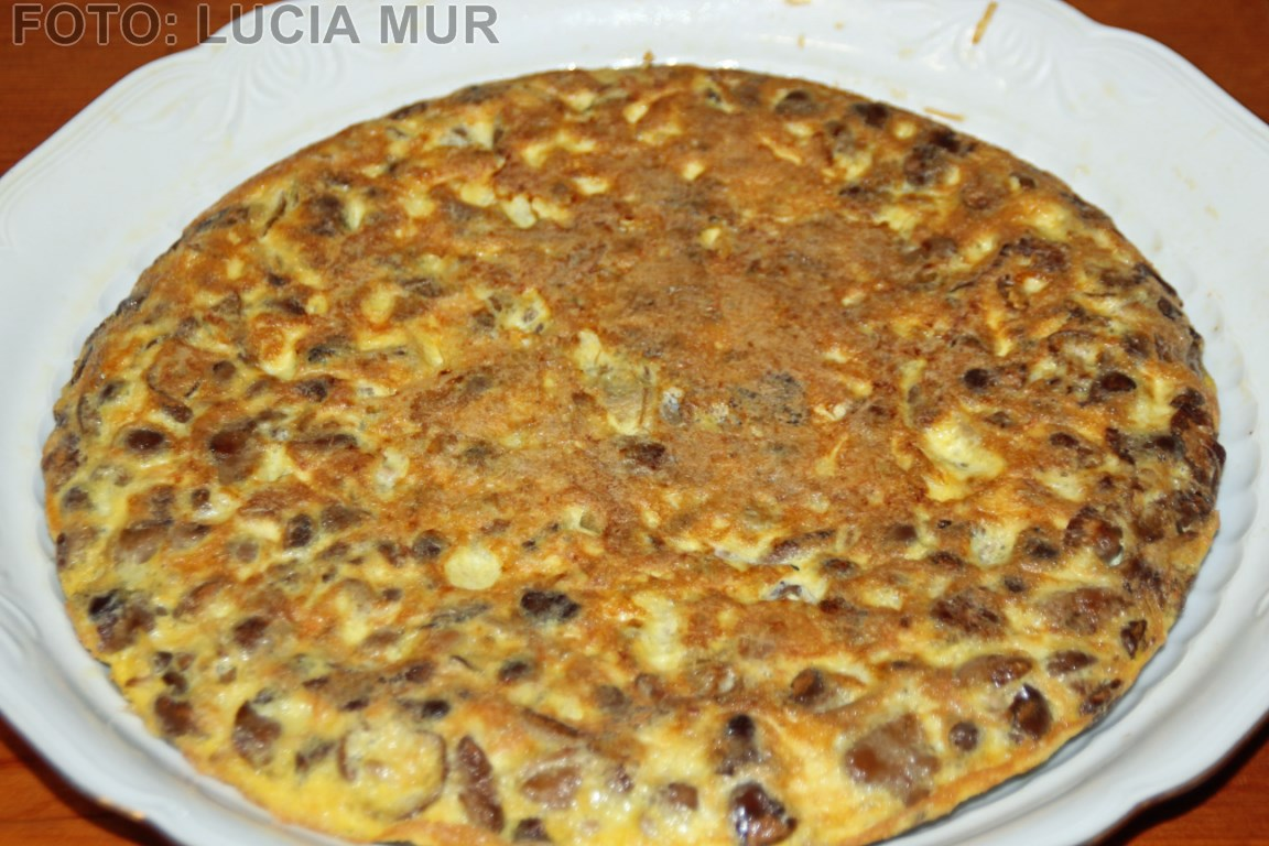 Tortilla setas [1280x768]