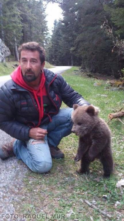 oso (Copiar)