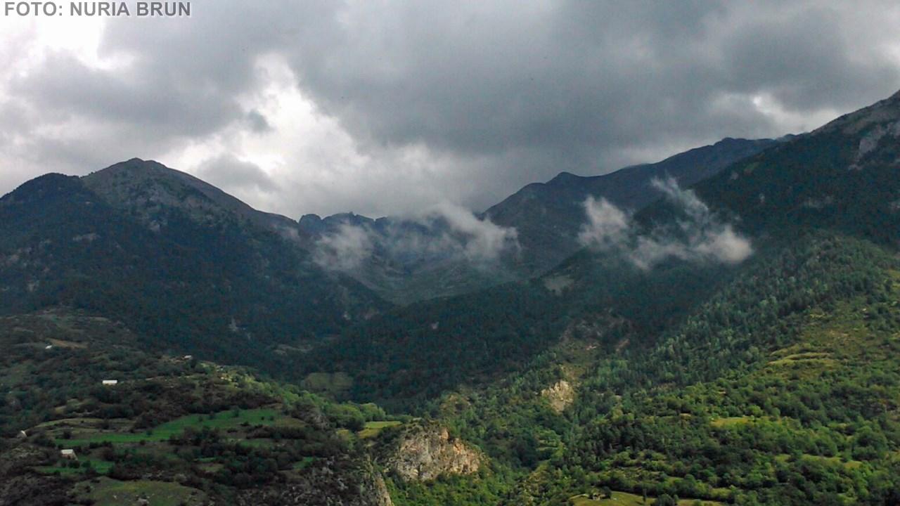 valle (Copiar)